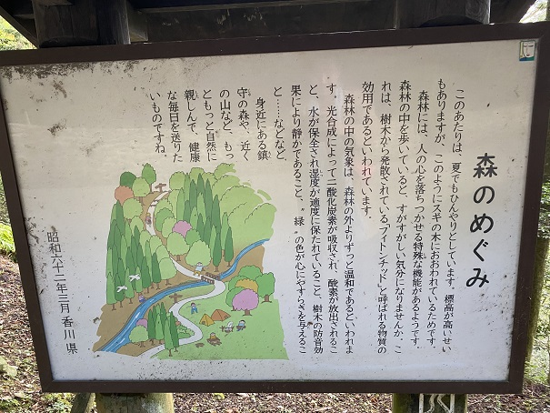 雲辺寺森のめぐみの説明