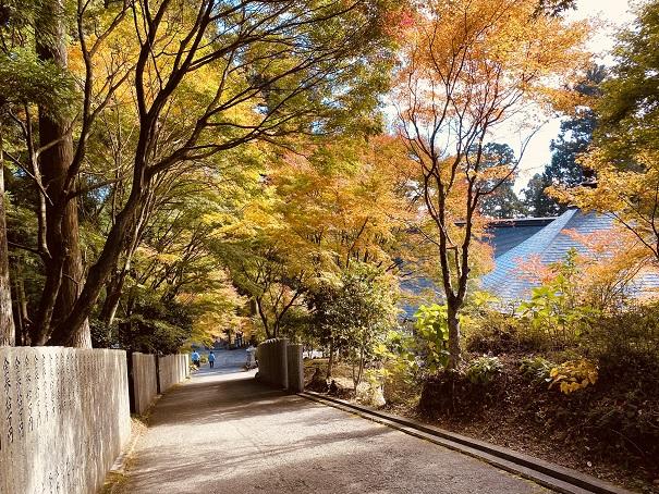 雲辺寺境内の紅葉