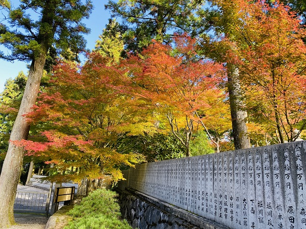 雲辺寺境内の紅葉徳島県