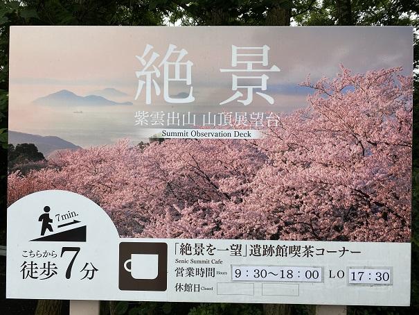 紫雲出山 桜1