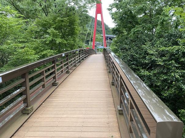 霧の森 橋