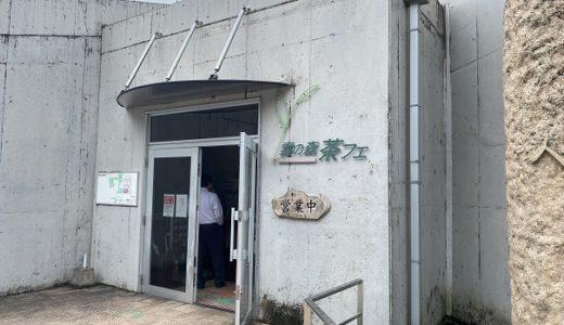 霧の森茶フェ ゆるり 新宮茶を楽しむカフェ 四国中央市