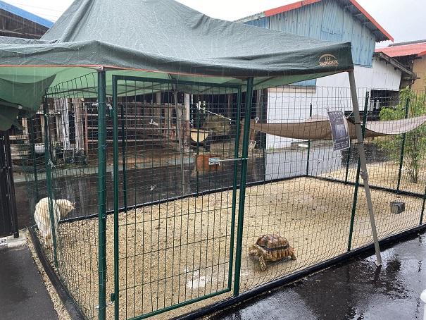 animal cafe Haru-Haru Farm (アニマルカフェ ハル-ハル ファーム)外の小屋