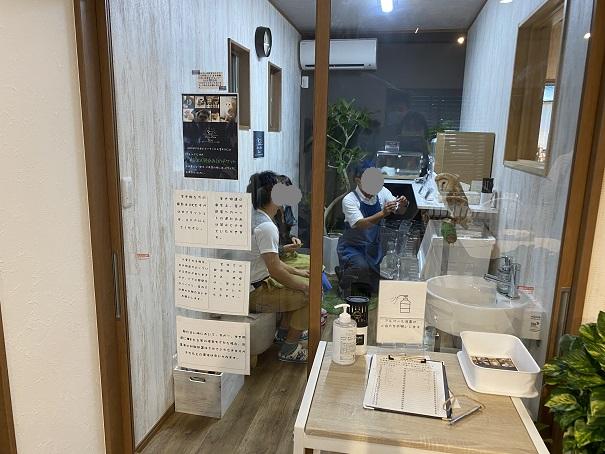 animal cafe Haru-Haru Farm (アニマルカフェ ハル-ハル ファーム)店内2