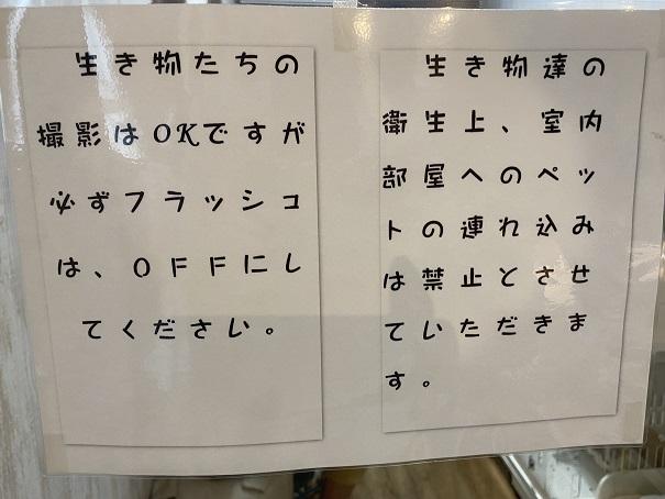 animal cafe Haru-Haru Farm (アニマルカフェ ハル-ハル ファーム)ふれあい案内1