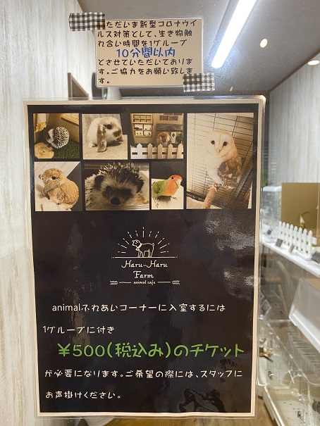 animal cafe Haru-Haru Farm (アニマルカフェ ハル-ハル ファーム)動物