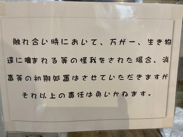 animal cafe Haru-Haru Farm (アニマルカフェ ハル-ハル ファーム)ふれあい案内3