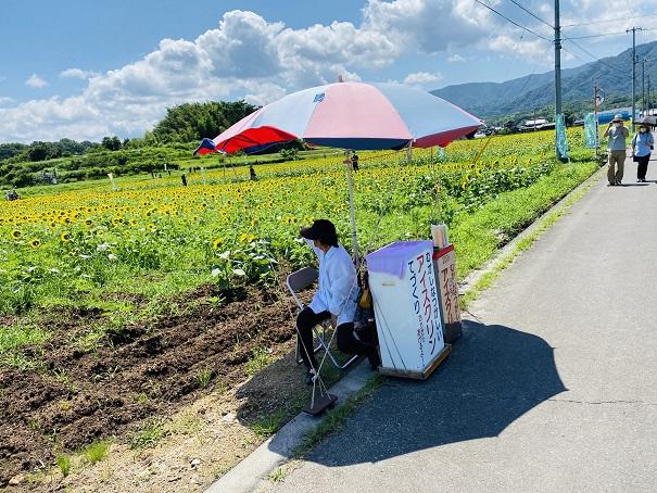 帆山ひまわり団地アイスクリーム販売