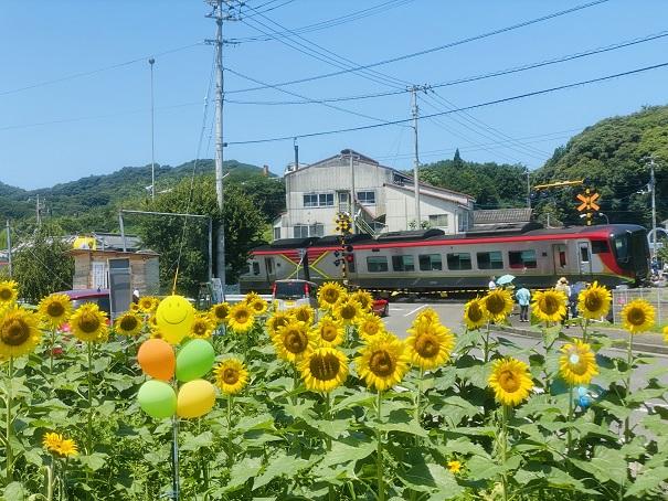 帆山ひまわり団地JR