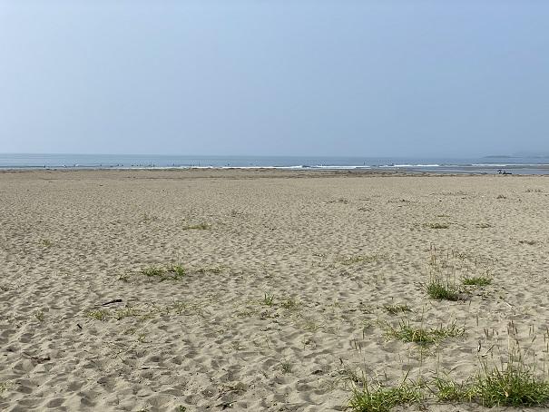 大方浮鞭サーフィンポイント砂浜
