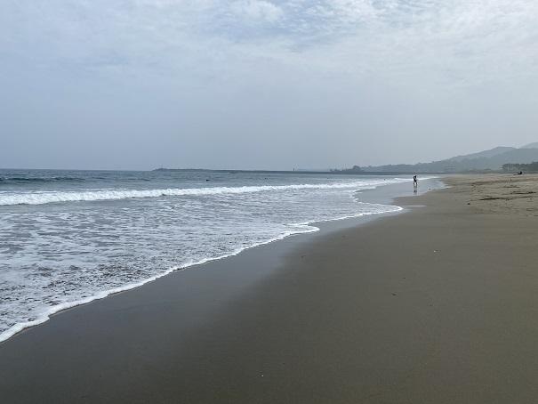入野海岸と太平洋