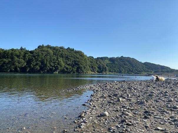 旧加田キャンプ場の仁淀川