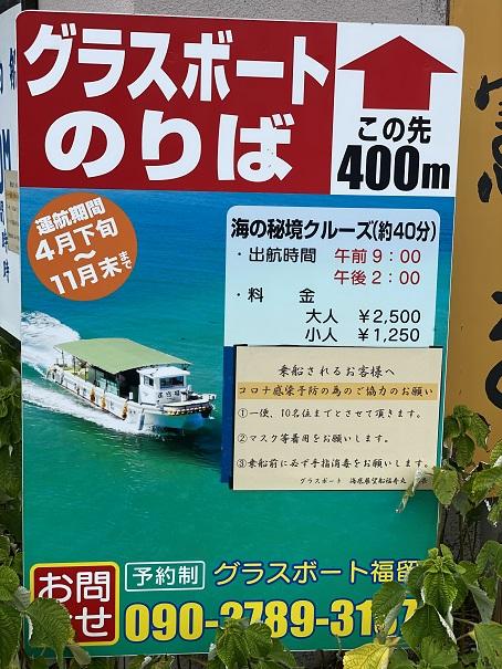 柏島 グラスボート