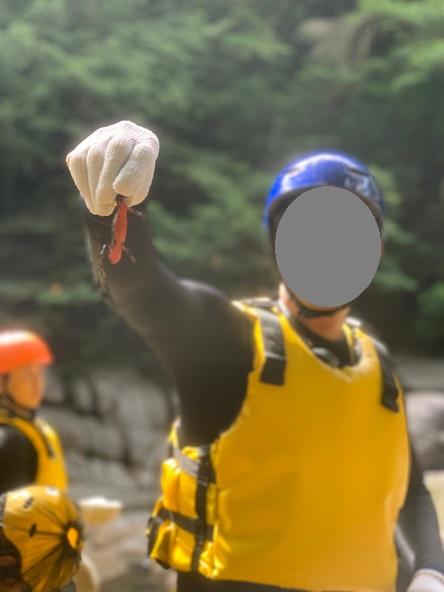 面河渓キャニオニング アカハライモリ