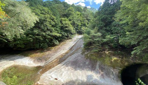 滑床渓谷 川遊びや飛び込み スライダー 野生のサルに遭遇と観光 目黒川