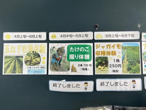 香南アグリーム 収穫体験1
