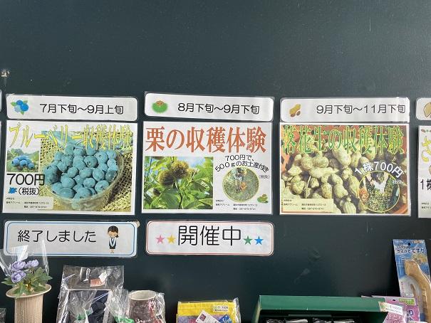 香南アグリーム 収穫体験2