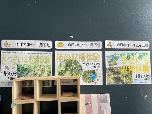 香南アグリーム 収穫体験3