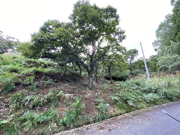 中尾山栗園 入口