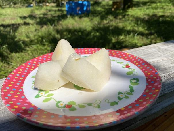 土本観光果樹園 むいた梨