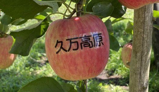 正岡観光りんご園 食べ放題りんご狩り・栗拾い 久万高原町