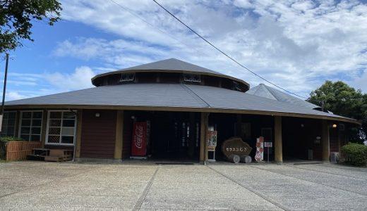 モラスコむぎ 貝の資料館と松ヶ磯の貝殻拾い 徳島県牟岐町