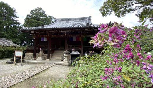 巨鼇山(きょごうざん)地蔵院 萩原寺 萩の花の名所 観音寺市