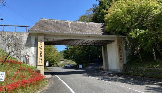 久万高原ふるさと旅行村 キャンプ 釣り堀 アルパカ 天文台