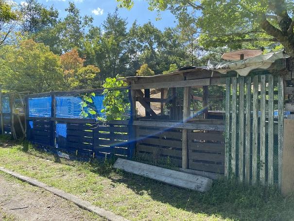 ふるさと旅行村 鶏小屋