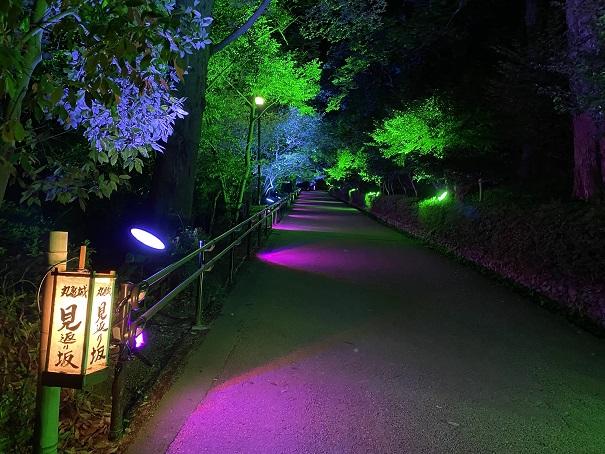 丸亀城キャッスルロード 見返り坂