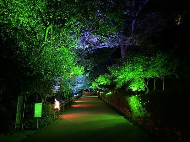 丸亀城キャッスルロード 見返り坂2