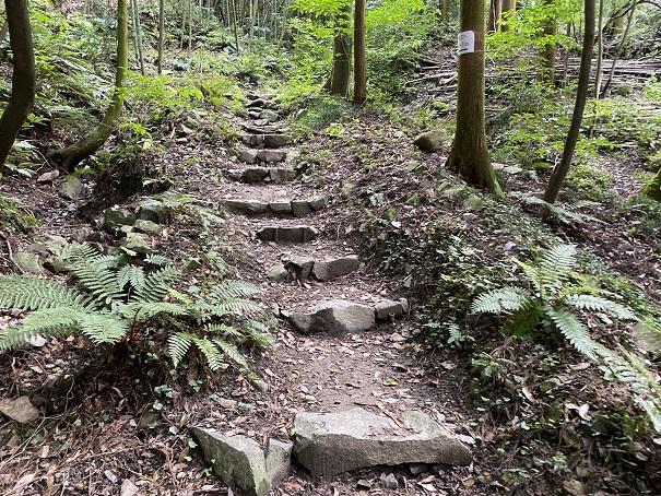志保山 風穴階段