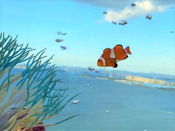 空を泳ぐニモ ソラキン