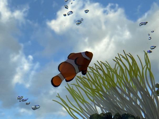 空を泳ぐカクレクマノミ