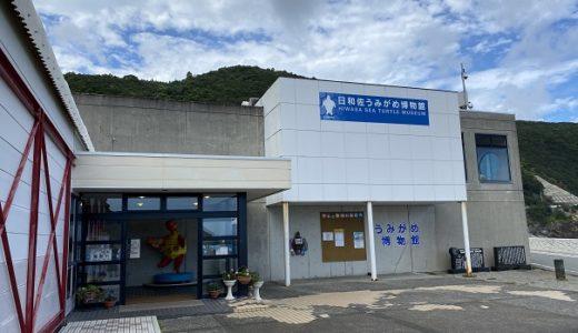 日和佐うみがめ博物館カレッタとウミガメの産卵地 大浜海岸 美波町