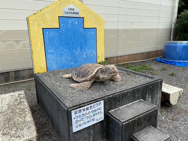 日和佐うみがめ博物館カレッタ 記念写真