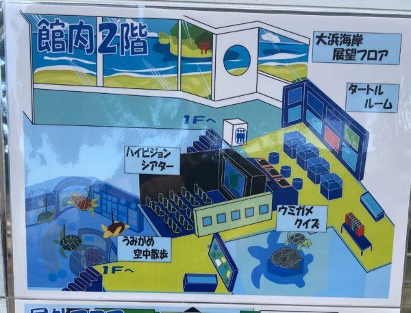 日和佐うみがめ博物館カレッタ 2階