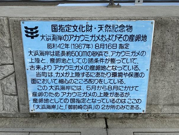 大浜海岸 天然記念物