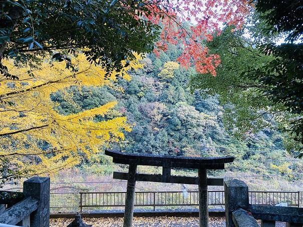 棒賀神社 上からの景色