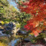 香川用水記念公園紅葉