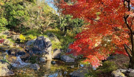香川用水記念公園 もみじの紅葉が美しい 水の資料館 三豊市