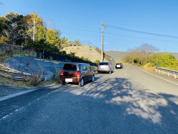 薬師院のイチョウ 道路沿いの車