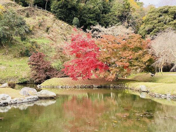 近水園 池