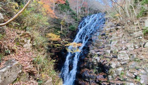 阿波森林公園 キャンプ場渓流釣り 白髪滝 大滝 布滝と紅葉 津山市