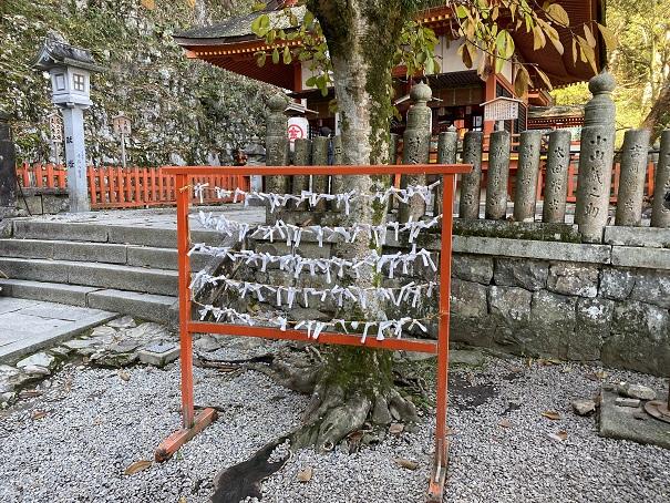 厳魂神社(奥社)おみくじ置き場