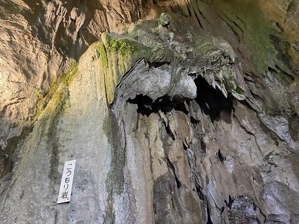 井倉洞 こうもり岩
