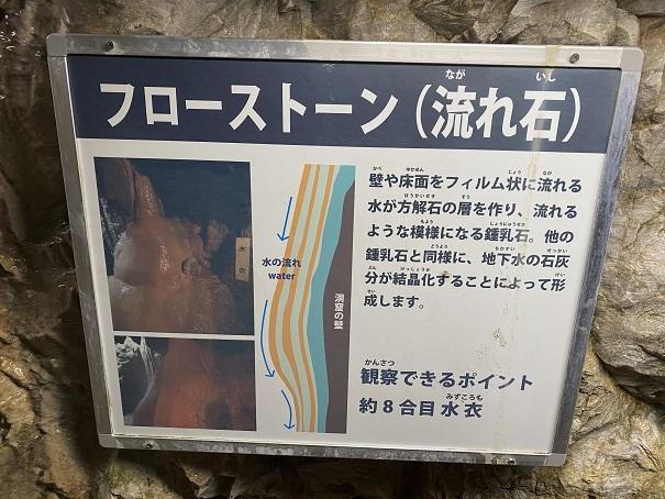 井倉洞 フローストーン
