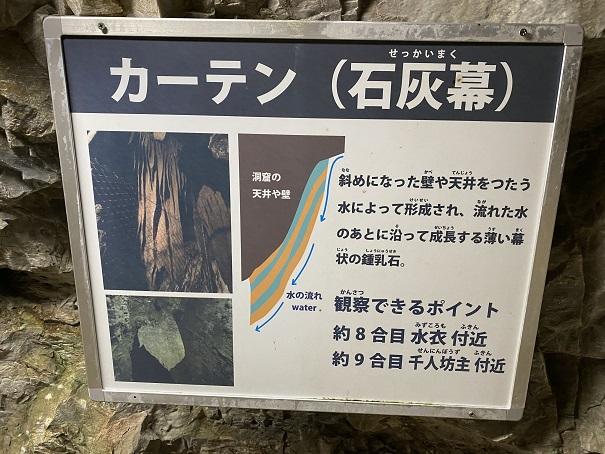 井倉洞 カーテン