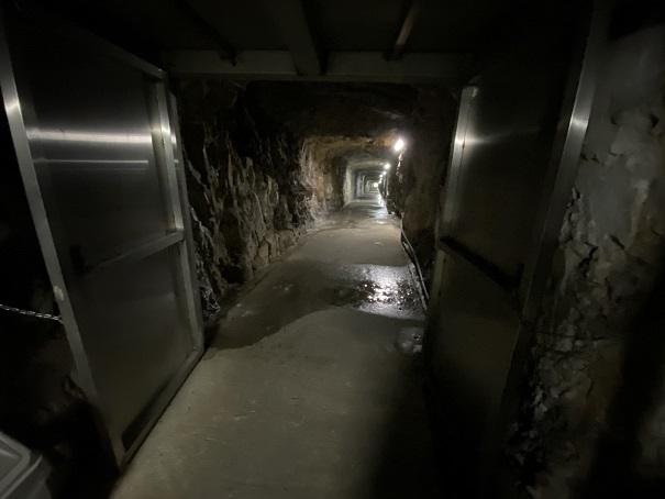 井倉洞 近道