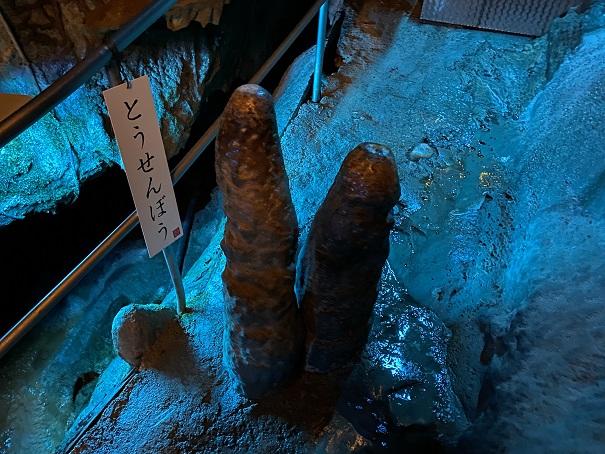 井倉洞 とうせんぼう